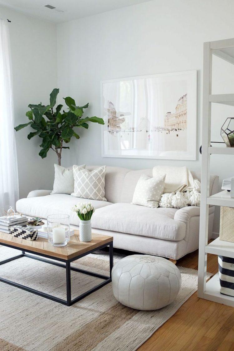 rose-sofa